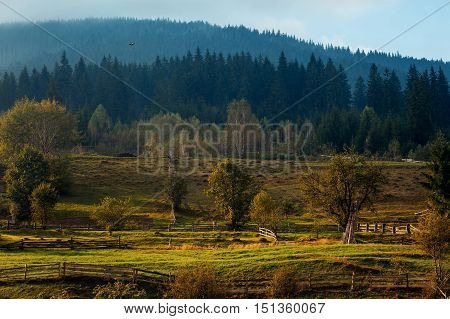 Mountain landscape with paddock for horses illuminated by the sun at dawn