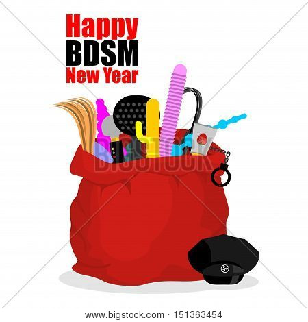 Happy Bdsm New Year. Red Sack Of Santa Claus With Adult Sex Toys. Dildo And Gag. Whip And Anal Tube.
