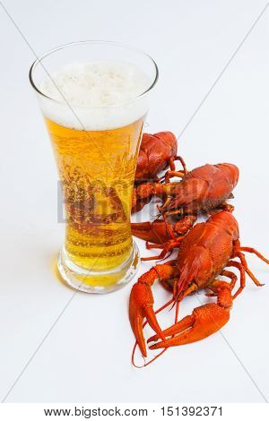 The Red Lobster With A Glass Of Beer