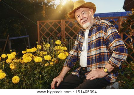 Portrait of a handsome senior man growing flowers in his garden. Gardening and floriculture. Happy retirement.