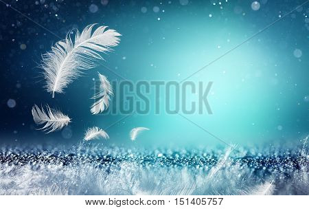Softness And Freshness Concepts - Feathers And Dew