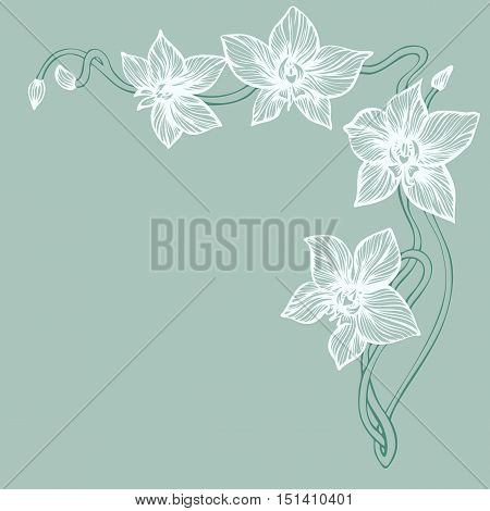 Modern corner design with Orchid hand drawn flowers. Line art orchid branch for angle border. Vector illustration.