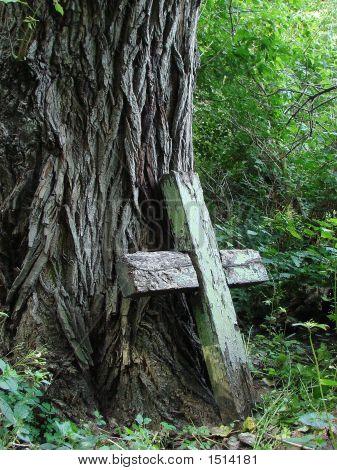Broken Wooden Cross