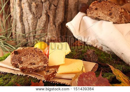 Picnic In Forest. Rye Bread, Cheese Slices And Tomatoes