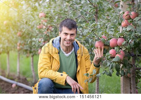 Engineer In Orchard