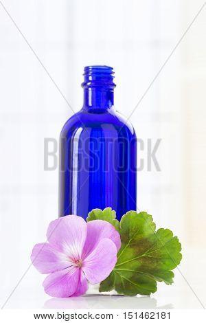 Essential geranium oil in lue bottle and geranium flowers