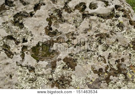 Sedimentary stone in Vitosha mountain, near Sofia