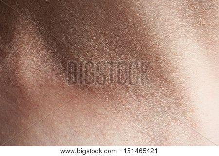 Skin On Man Neck
