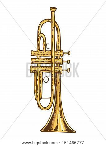 Musical Instrument. Brass Trumpet Isolated on a White Background