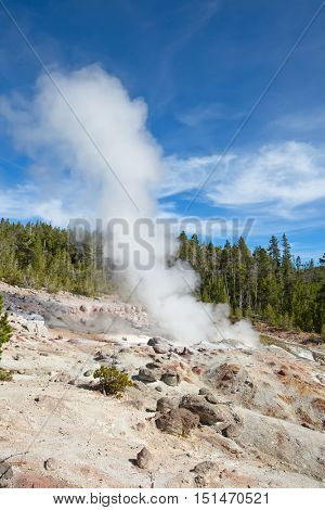 Steamboat geyser eruption in the Yellowstone national park, USA