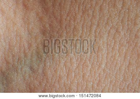 Green Vien Under Skin