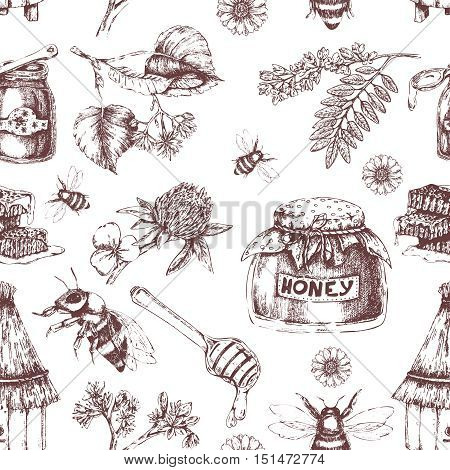 Honey hand drawn seamless pattern with hive plants pots of bee product on white background vector illustration