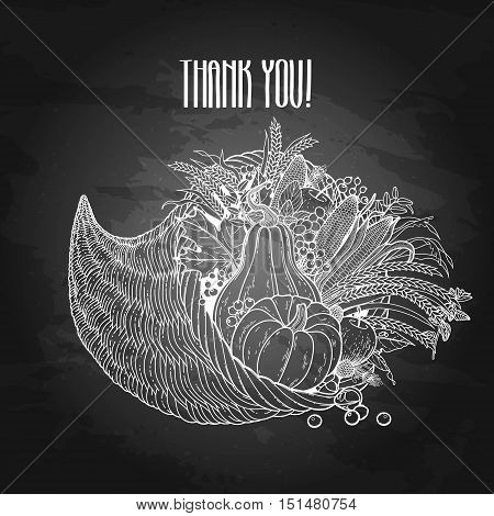 Graphic cornucopia drawn in line art style. Thanksgiving day art. Vector illustration isolated on chalkboard.