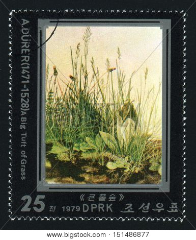 NORTH KOREA - CIRCA 1979: A post stamp printed in North Korea shows A Big Tuft of Grass by Albrecht Durer, circa 1979