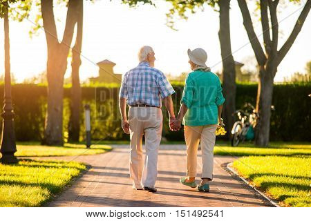 Back view of senior couple. People walking and holding hands. Respect past and cherish present. We are grateful to fate. poster