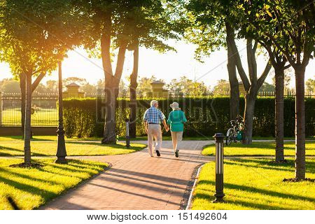 Couple walks near trees. Senior man holding woman's hand. Great time spent together. Confident in every step.