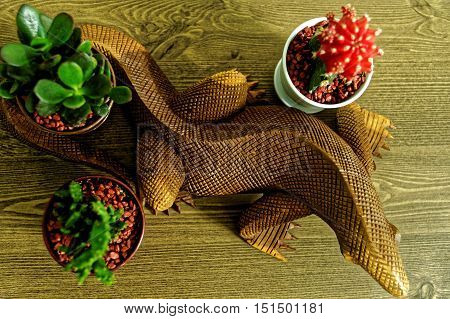 close up of a wooden komodo dragon on a wooden surface surrounded by two small green cactus flowers and one red cactus flower.