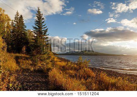 autumn forest, fall colors, russian nature, urals nature, autumn landscape