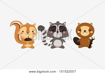 squirrel raccoon and beaver icons image vector illustration design