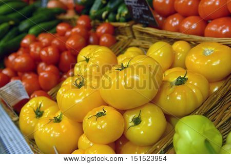 yellow and red tomatoes on display at a supermarket