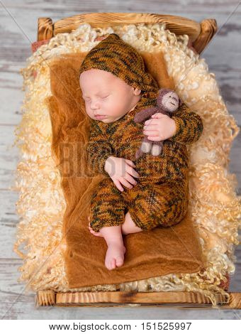 newborn sleeping boy on little bed in brown knitted suit and hat with toy in hand