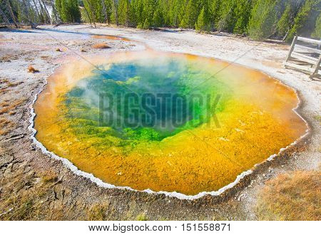 Colorful hot water pool in the Yellowstone Natinal park, USA