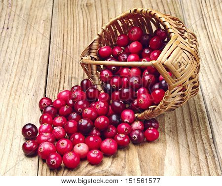 Cranberries near the basket on wooden background