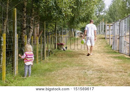Father With Daughter At The Farm. New Zealand