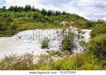 Golden Fleece, Thermal Area Orakei Korako In New Zealand
