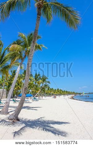 The fine white sand of Smathers Beach, Key West, Florida. Smathers Beach is Key West's longest beach and is located on the Atlantic Ocean side. Popular tourist destination.