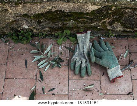 green gloves for gardening left on the floor