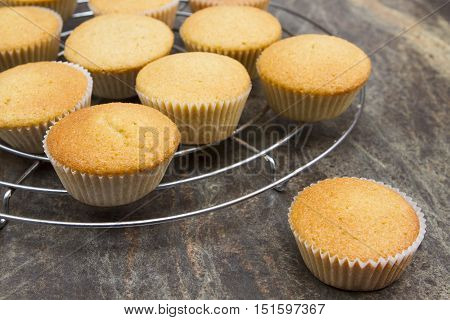 Cooling fairy cakes on a cooling rack freshly baked