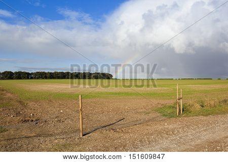 Farmland And Rainbow