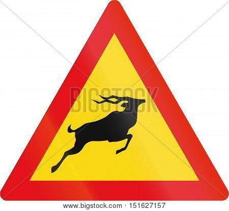 Temporary road sign used in the African country of Botswana - Antelope. poster