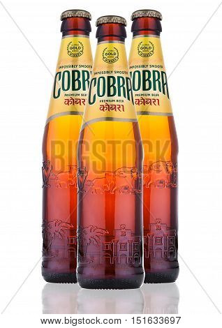 LONDON UK - OCTOBER 06 2016: Cobra Premium beer on a white background Cobra 5.0% Premium Beer is brewed to an authentic Indian recipe using the finest natural ingredients