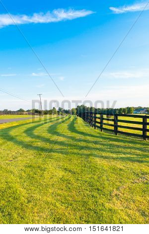 Green pastures of horse farms with fence line and shadow along a country road.Countryside summer landscape.