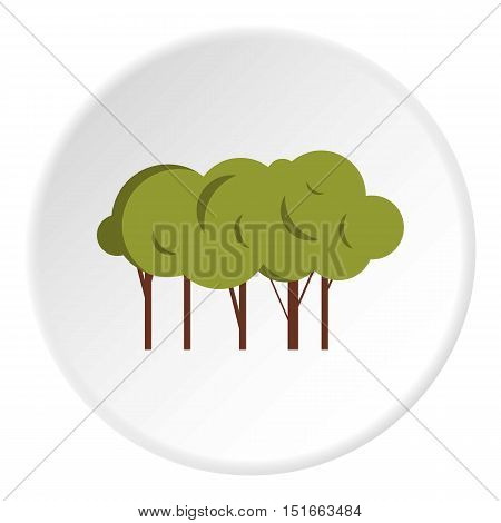 Lot of trees icon. Flat illustration of lot of trees vector icon for web