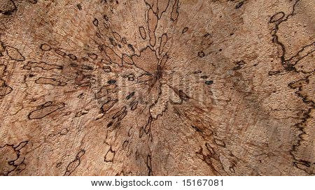 Wooden abstract image