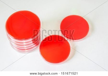 Blood Agar(ba) Plates Are Selective Media For Bacteria Growth.