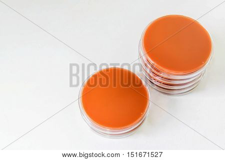 Chocolate Agar(ca) Are Selective Media For Bacteria Growth.