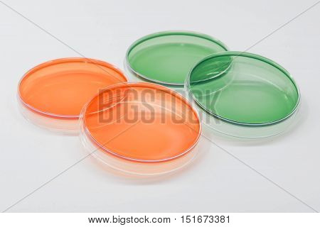 Ss Agar And Tcbs Agar