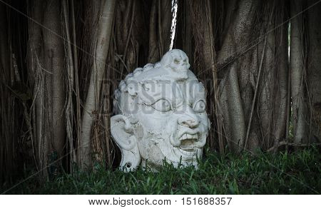 White giants head statue on the ground under the banyan tree.