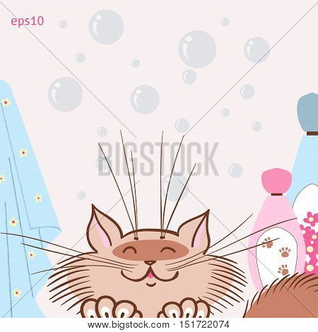 Cat likes to wash. Vector illustration. Bubbles, shampoo and towels.