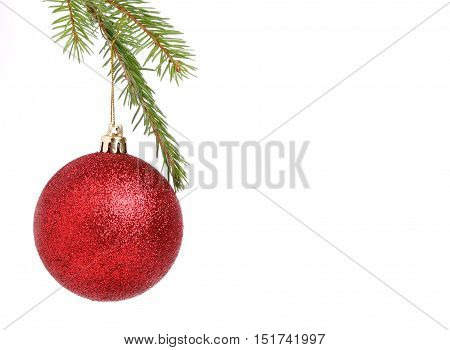 One red Christmas ball in a Christmas tree isolated on white background