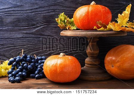 Still life with pumpkin in rustic style with copy space