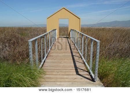 Doorway To The Bay