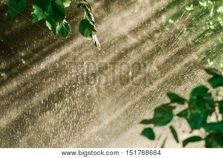 Rain through sunshine background. Sun shower water spray