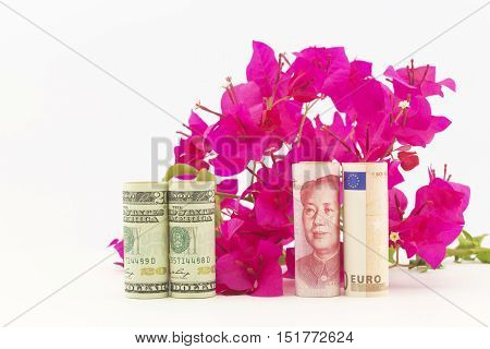 Three currencies American dollars China yuan and European Union euro in front of red bougainvillea reflect economic recovery hopes for fresh global growth.
