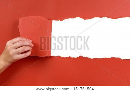 Hand tearing red paper background strip with white copy space