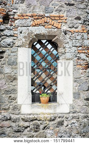 Potted red flower in barred window. Architecture element. Symbolic object. Vertical composition.